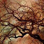 The Dream Oak Triptych Left Panel Art Print