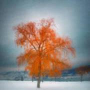The Dreams Of Winter Art Print