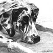 The Duke Art Print by J Ferwerda