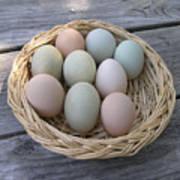 The Eggs Art Print