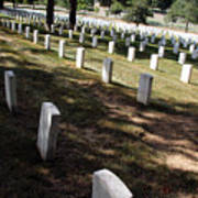 Arlington Tombstones Shade And Light Art Print