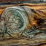 The Eye In The Wood Art Print
