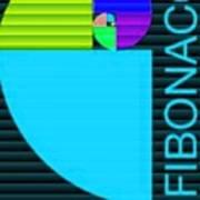 The Fibonacci Equation Catus 1 No. 2 V B Art Print