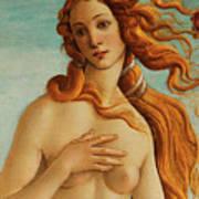 The Face Of Venus Art Print