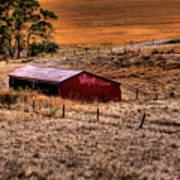 The Farm Print by David Patterson