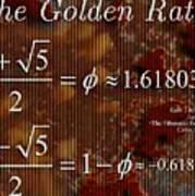 The Fibonacci Equation Catus 1 No. 1 H  Art Print