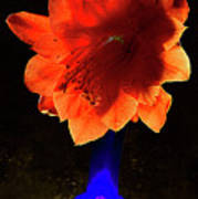 The Flower Of Cactus In A Blue Vase. Art Print