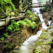 The Flume Gorge Lincoln New Hampshire Art Print