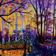 The Forest - Yellow Pond  Art Print