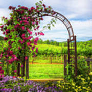 The Garden At The Winery Art Print
