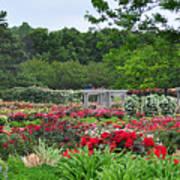 The Garden Of Bloom Art Print