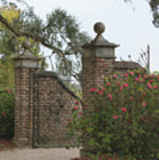 The Gate At Boone Hall Art Print