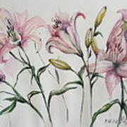 Gentle Flowers Art Print