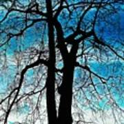 The Ghostly Tree Art Print