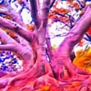 The Giving Tree 3 Art Print