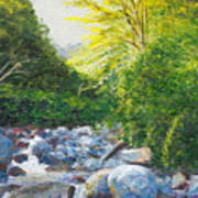 The Gladeburn Beside The Milford Track Fiordland New Zealand Art Print