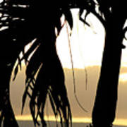 The Glow Of Maui Art Print