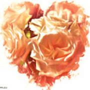 The Glow Of Roses Art Print