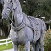 Horse At The Grand Oaks Resort Art Print