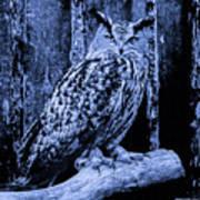 Majestic Great Horned Owl Blue Indigo Art Print