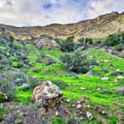 The Greening Of The Las Llajas Trail  Art Print