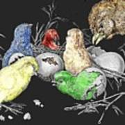 The Hatching Of Chicks. Art Print