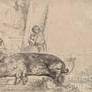 The Hog Art Print