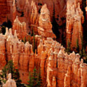 The Hoodoos In Bryce Canyon Art Print