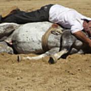 The Horse Whisperer Art Print
