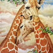The Hug - Giraffes Art Print