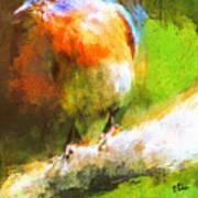 The Impressive Bluebird Art Print