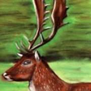The Irish Deer Art Print