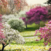The Joy Of Spring Art Print