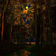 The Jungle Moon Art Print