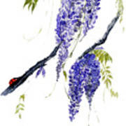 The Ladybird And The Wisteria Art Print