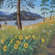 The Lake Trail Art Print
