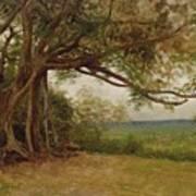 The Landing Of Columbus Print by Albert Bierstadt