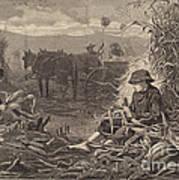 The Last Days Of Harvest Art Print
