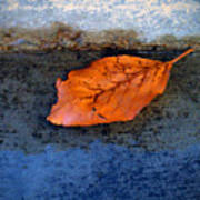 The Leaf On The Stairs Art Print
