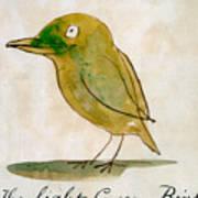 The Light Green Bird Art Print