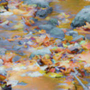 The Lightness of Autumn Art Print