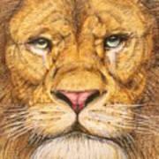 The Lion Roar Of Freedom Art Print
