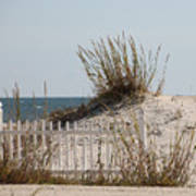 The Little Dune And The White Picket Fence Art Print