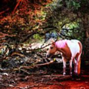 The Little Pink Unicorn By Pedro Cardona Art Print