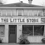 The Little Store Art Print by Lauri Novak