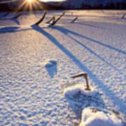 The Long Shadows Of Winter Art Print