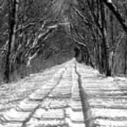 The Long Winter Walk Art Print