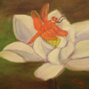 The Lotus And The Dragonfly Art Print