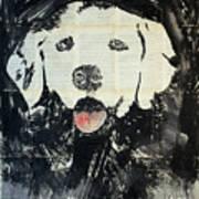 The Neighbor's Dog .  Art Print