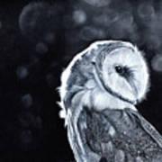 The Night Watcher Art Print